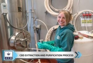 CBD Extraction and Purification Process-min